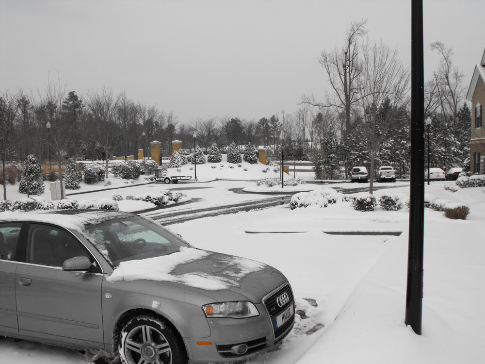Audi Cary
