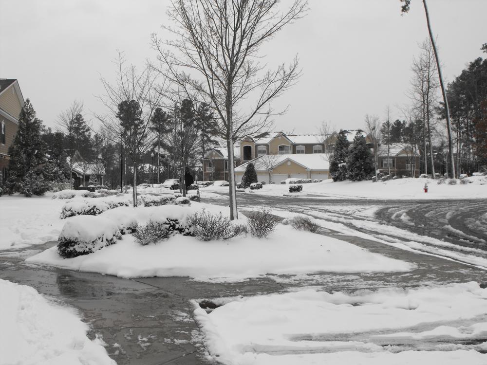 Raleigh Snowstorm